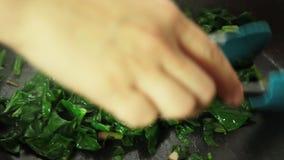 Cuisiner la recette de quiche et mélanger les ingrédients banque de vidéos