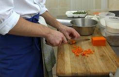 Cuisinier photos libres de droits
