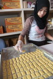 Cuisinier Bread Images libres de droits