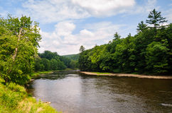 Cuisinier Forest State Park Images stock