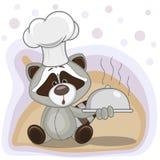 Cuisinier Raccoon Photographie stock libre de droits