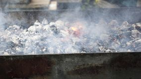 Cuisiniers de viande sur les charbons chauds dans la fumée Pique-nique en nature photo stock