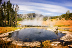 Cuisson à la vapeur de la piscine dans le pair de ressortissant de Yellowstone Image libre de droits