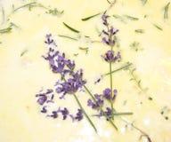 Cuisson avec la lavande et les herbes Photographie stock