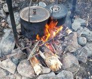 Cuisson de la nourriture de feu de camp photos stock