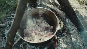 Cuisson de la nourriture sur un feu de camp dans la vie de forestCamp déplacement clips vidéos