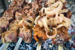 Cuisson de la viande sur l'incendie Photographie stock