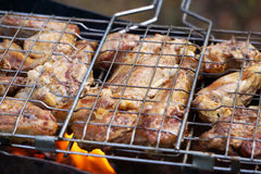 Cuisson de la viande sur l'oie de barbecue Photographie stock