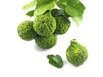Cuisson de vert de bergamote images stock
