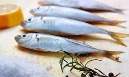 Cuisson des poissons Photographie stock libre de droits