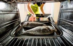 Cuisson des poissons de Dorado dans le four Images stock