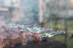 Cuisson du barbecue sur la nature Images libres de droits