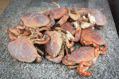 Cuisson du crabe image stock