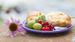 Cuisson, groseilles rouges et groseilles à maquereau photographie stock libre de droits