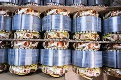 Cuivre de moteur électrique Photographie stock libre de droits