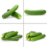Cuke collection Stock Photography