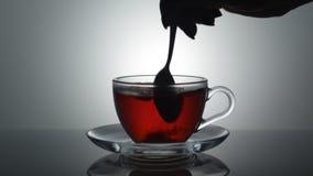 Cukier w herbacie zbiory wideo