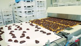Cukierek fabryka Czekoladowi cukierki kłama na konwejerze zbiory