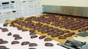 Cukierek fabryka Czekoladowi cukierki kłama na konwejerze zbiory wideo