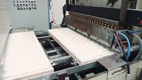 Cukierek fabryka Przemysłowa maszyna robi cukierkom zbiory wideo