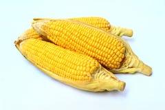 cukierki kukurydzanego przemysłu przerobowy cukierki Fotografia Stock