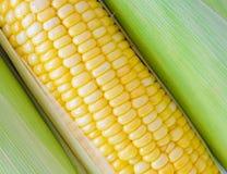 cukierki kukurydzanego przemysłu przerobowy cukierki Obraz Royalty Free