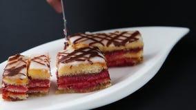 Cukierki menchii poncza tort zbiory wideo
