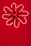 cukierku trzciny kwiat Obrazy Royalty Free
