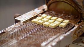 Cukierniczka z czekoladową narzut maszyną zbiory