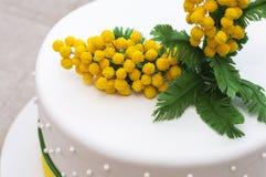 Cukrowe mimozy Zdjęcie Royalty Free