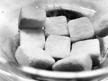 Cukrowi sześciany Obraz Stock