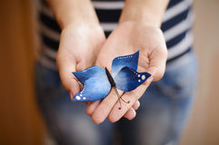 Cukrowy Błękitny motyl w rękach kobiety Zdjęcie Royalty Free