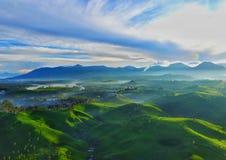 Cukul della piantagione di tè, Java pangalengan e ad ovest fotografia stock