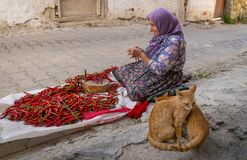 Free Cukuroren, Bilecik / Turkey -September 08 2019: An Old Woman Array And Arrange Long Red Pepper To Hang And Dry. Sewing Needle And Royalty Free Stock Images - 162409069