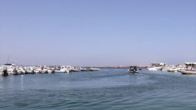 Culatra island port, located in Algarve. Portugal stock video footage