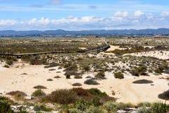 Free Culatra Island. Portugal. Royalty Free Stock Photos - 168046768