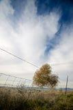 Culbute dans une barrière Photographie stock libre de droits