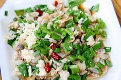 Culinária chinesa Imagens de Stock