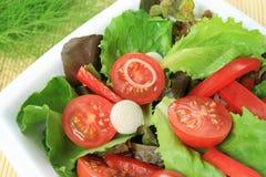 Culinária colorida do vegetariano fotografia de stock