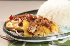 Culinária cozinhada da galinha do estilo chinês fotografia de stock