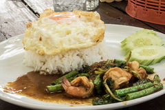 culinária de Tailândia Arroz fritado da manjericão Imagem de Stock