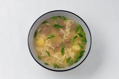 Culinária do russo sopa da carne com macarronetes caseiros imagens de stock