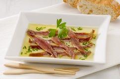 Culinária espanhola. Anchovas postas de conserva. Aceite do en de Anchoas. Foto de Stock