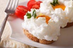 Culinária francesa: ovos cozidos Orsini e close up do tomate horizontal Imagem de Stock Royalty Free