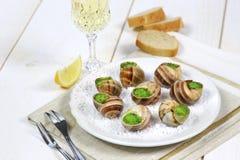 Culinária francesa tradicional: molho Borgonha dos caracóis foto de stock
