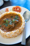 Culinária indiana foto de stock