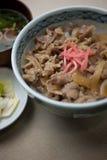 A culinária japonesa GyÅ ?don Fotografia de Stock Royalty Free
