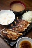 Culinária japonesa GyÅza ou Potstickers Fotografia de Stock Royalty Free