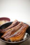 Culinária japonesa Unadon Imagem de Stock Royalty Free