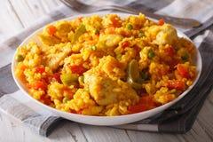 Culinária latino-americano: Fim do pollo de engodo de Arroz acima em uma bacia horizontal Imagem de Stock Royalty Free